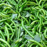 Green Chilli Pickle Make chilli sour-sweet pickle in minutes, increases the suit of the lips